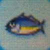 Horse mackerel.jpg