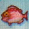 Red snapper.jpg