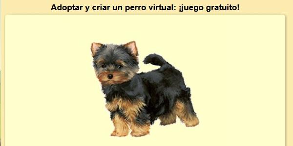 Dogzerterrier